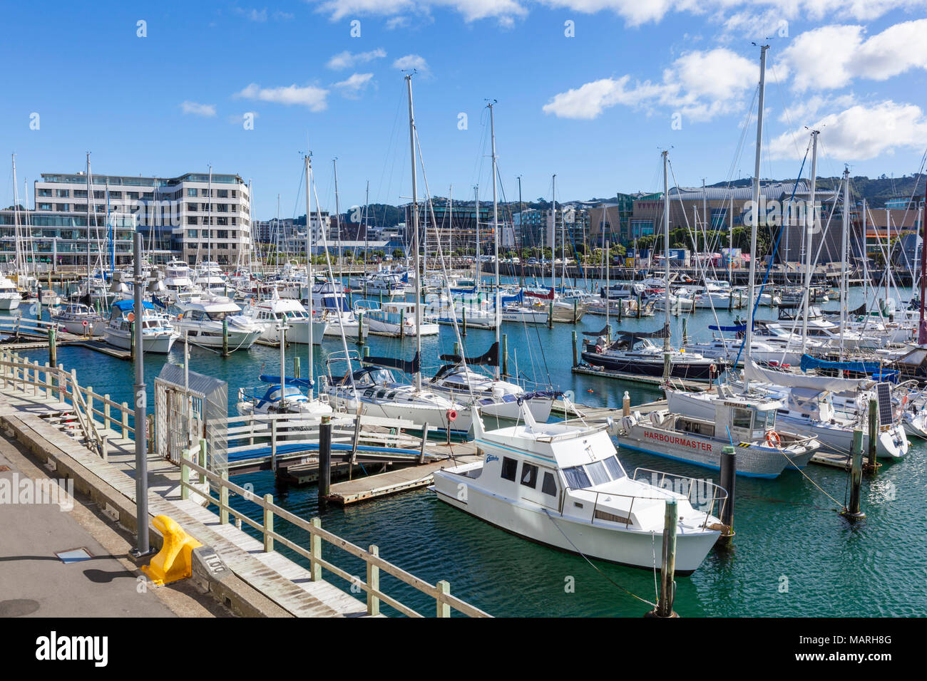 NEW ZEALAND WELLINGTON NEW ZEALAND Yachts moored in  Chaffers marina Clyde Quay wharf Wellington Waterfront Wellington New zealand - Stock Image