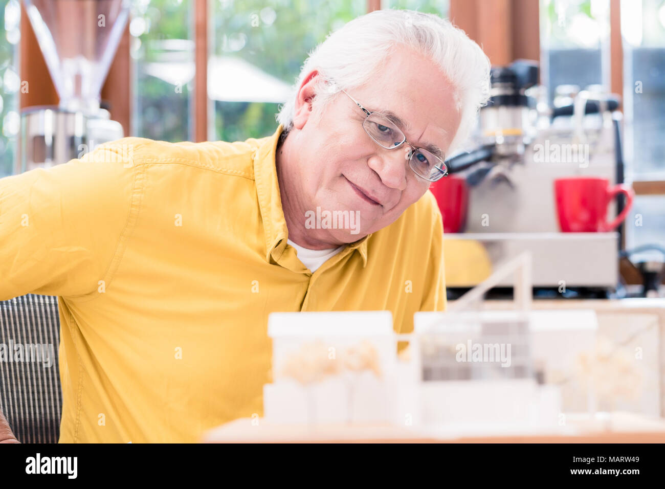 Asian architect studying an innovative residential project - Stock Image