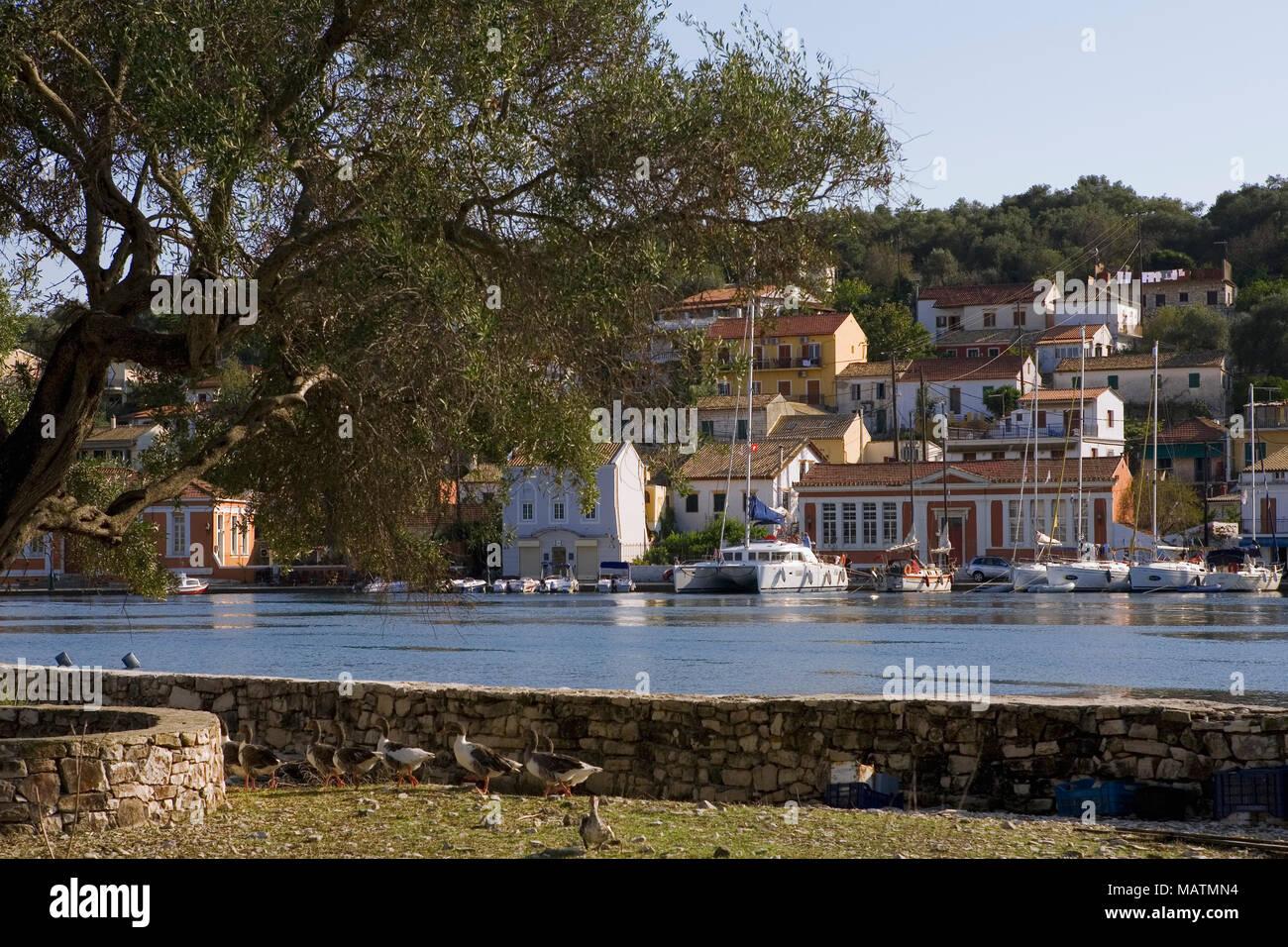 Gaios harbour, from the islet of Agios Nikolaos, Paxos, Greece - Stock Image