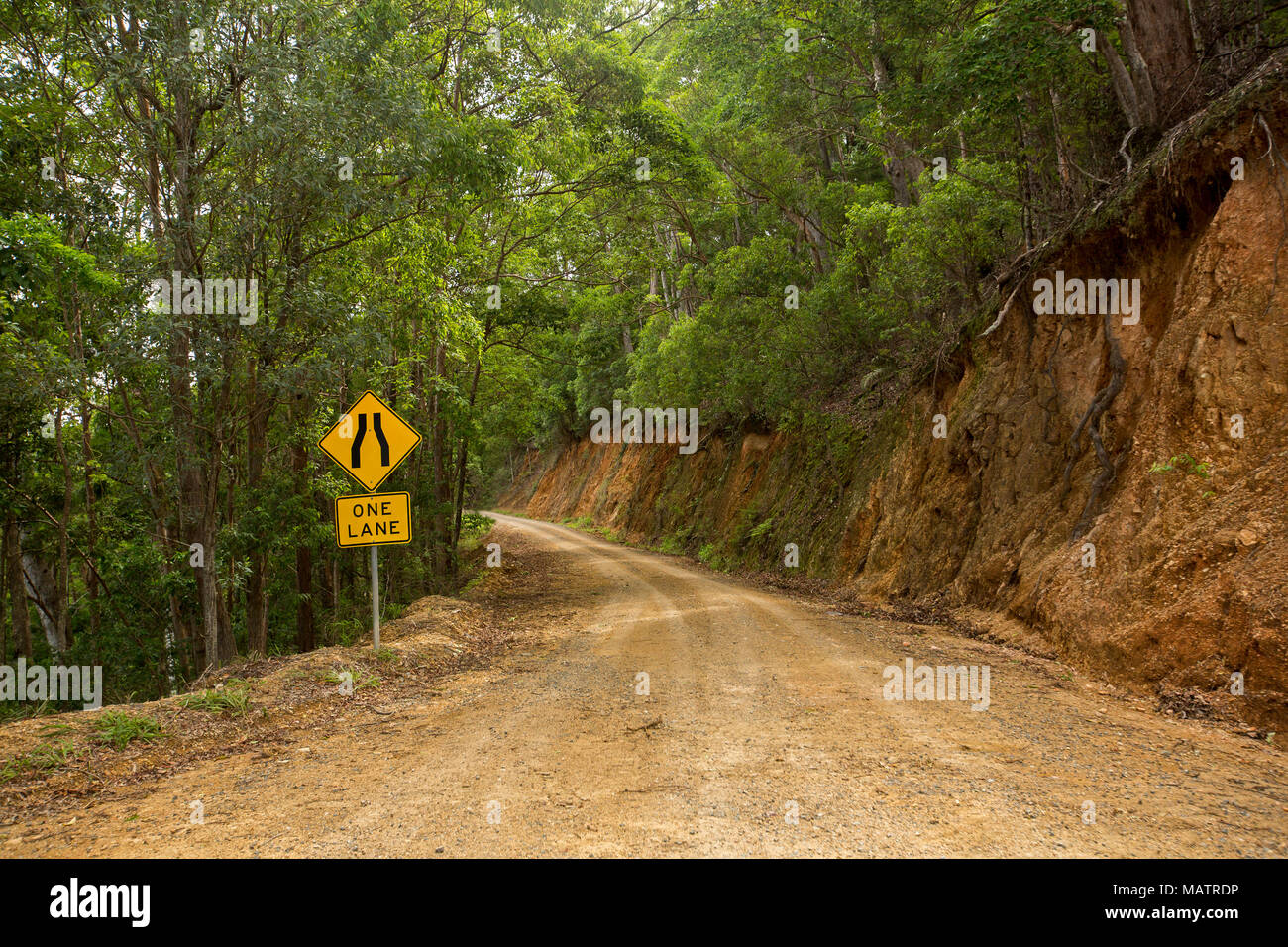 Narrow dirt road winding through forested landscape of Conondale Ranges National Park in Queensland Australia Stock Photo