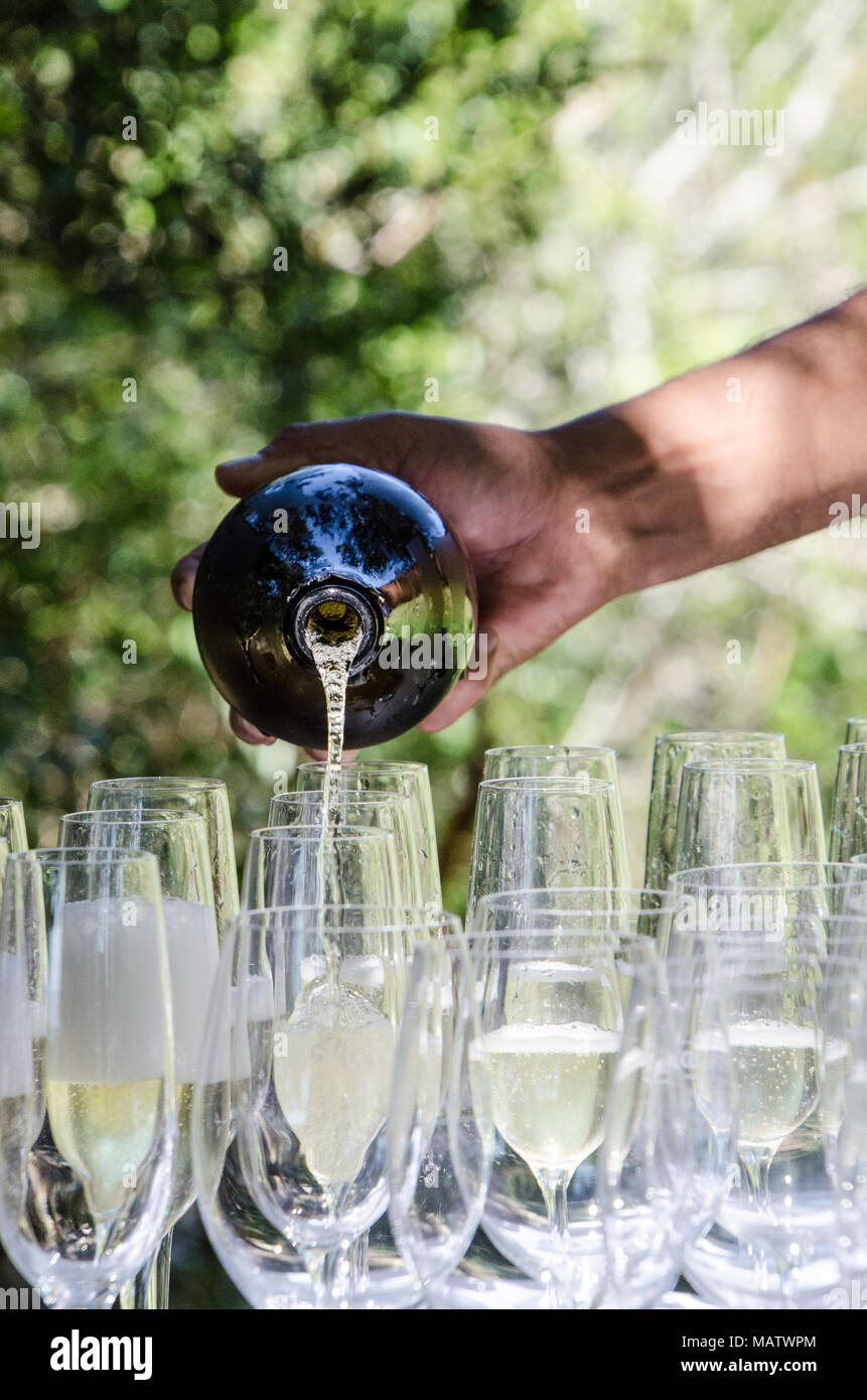Mans hand pours sparkling wine into glasses at outdoor event. Celebrating with champagne outside on sunny day. - Stock Image