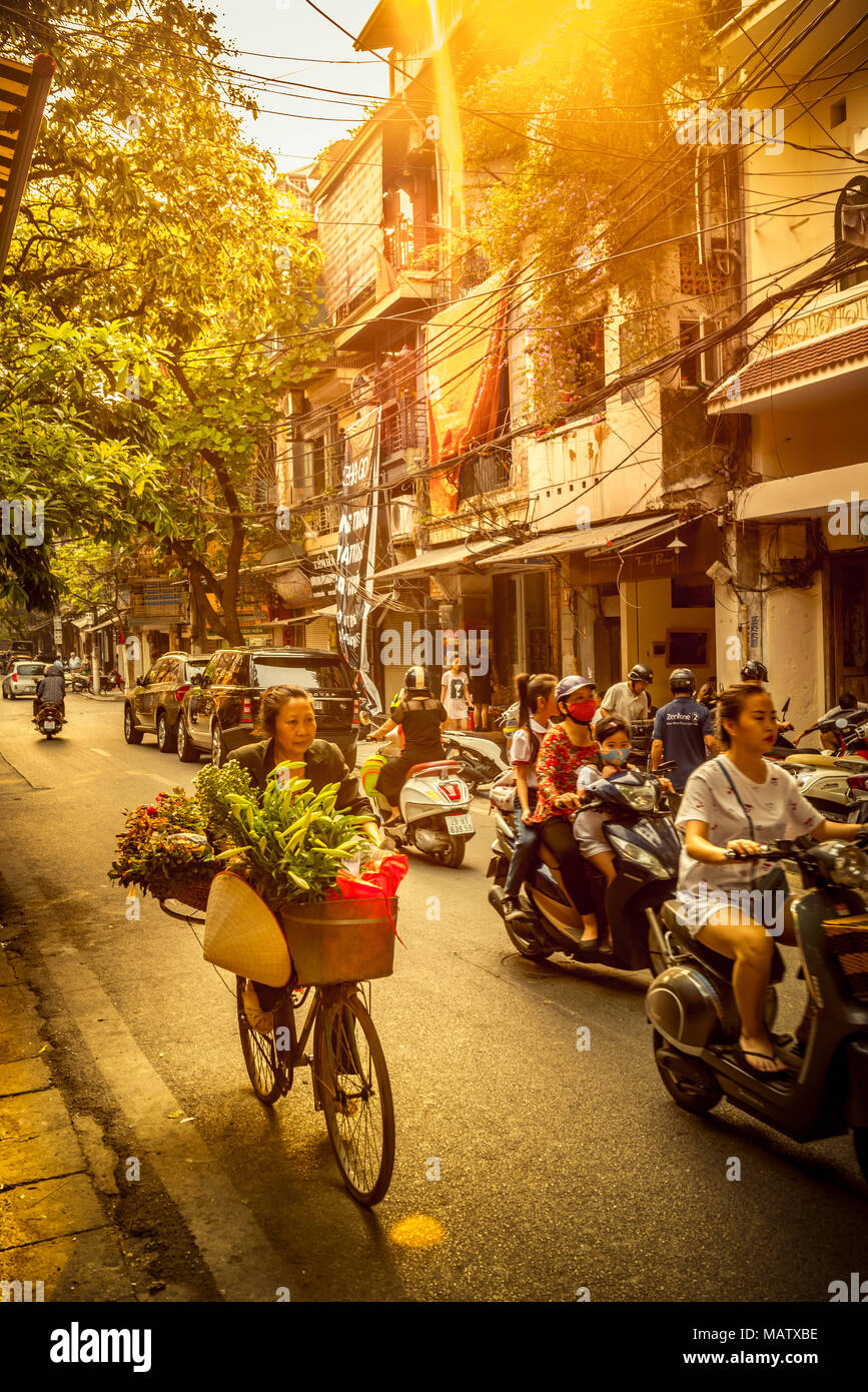 Asien, Vietnam, Hanoi, Verkehr, Transport, Transportmittel - Stock Image