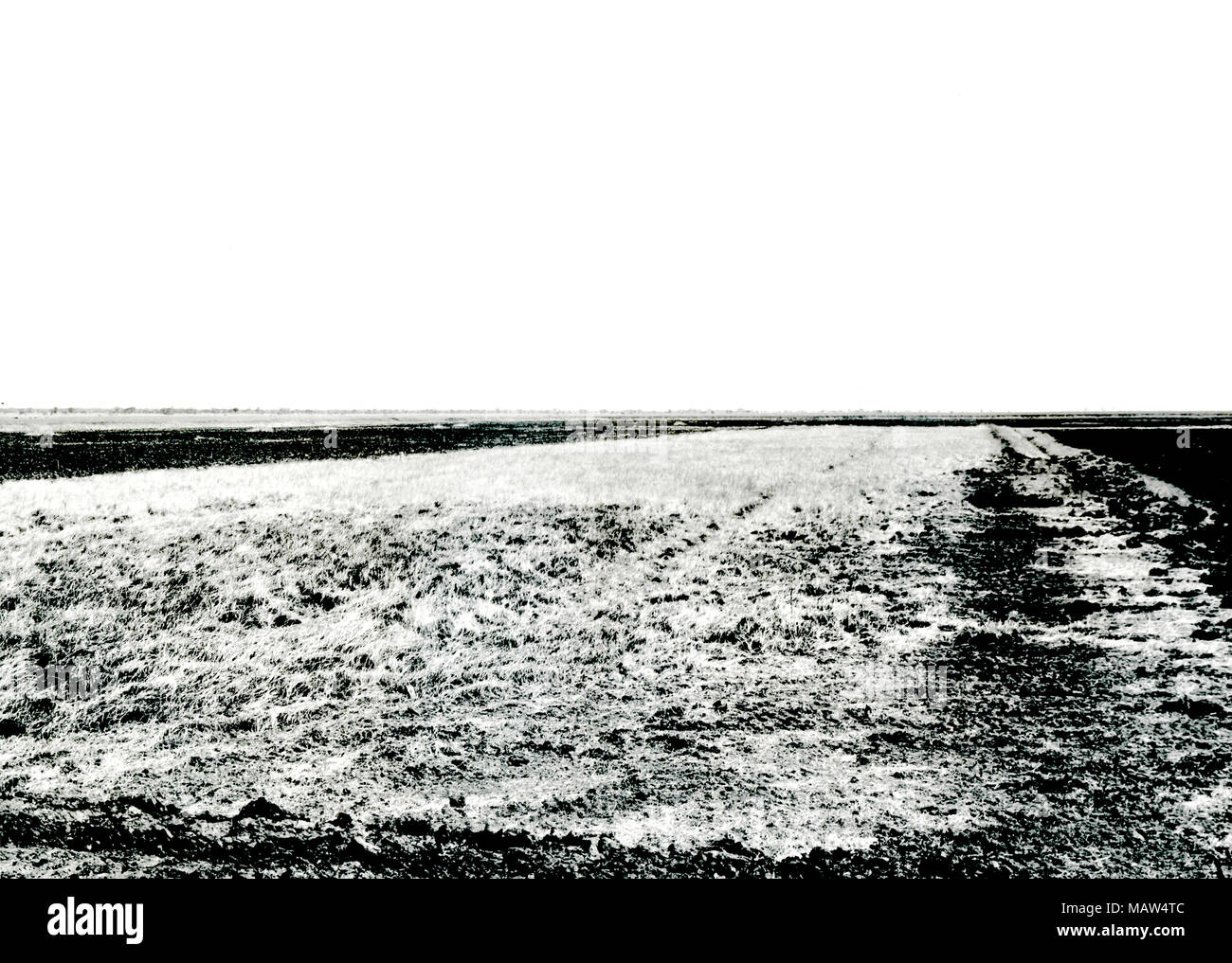 Unclaimed field, Zambia, South Rhodesia 1957 - Stock Image