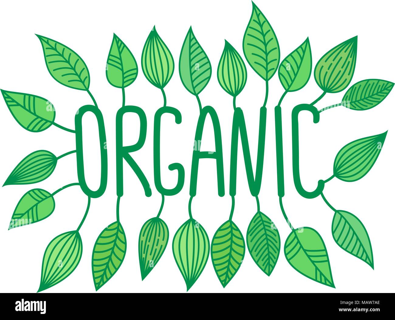 Green organic sign in with growing leaves, vector label and tag, fresh food concept sticker - Stock Vector