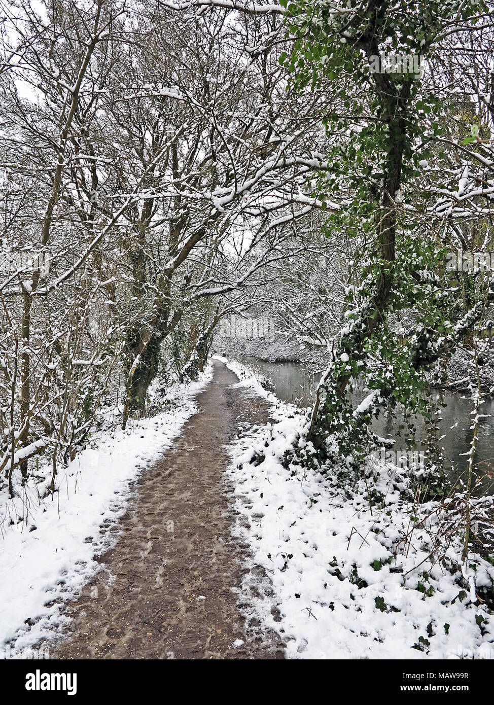 River Itchen Navigation Heritage Trail, after a snowfall, Eastleigh, Hampshire, England. - Stock Image