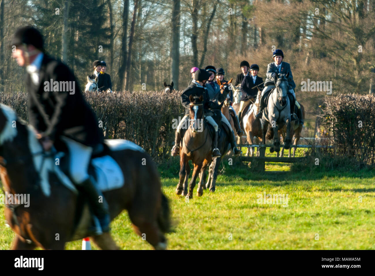 The Boxing Day hunt by the Surrey Union Hunt. - Stock Image