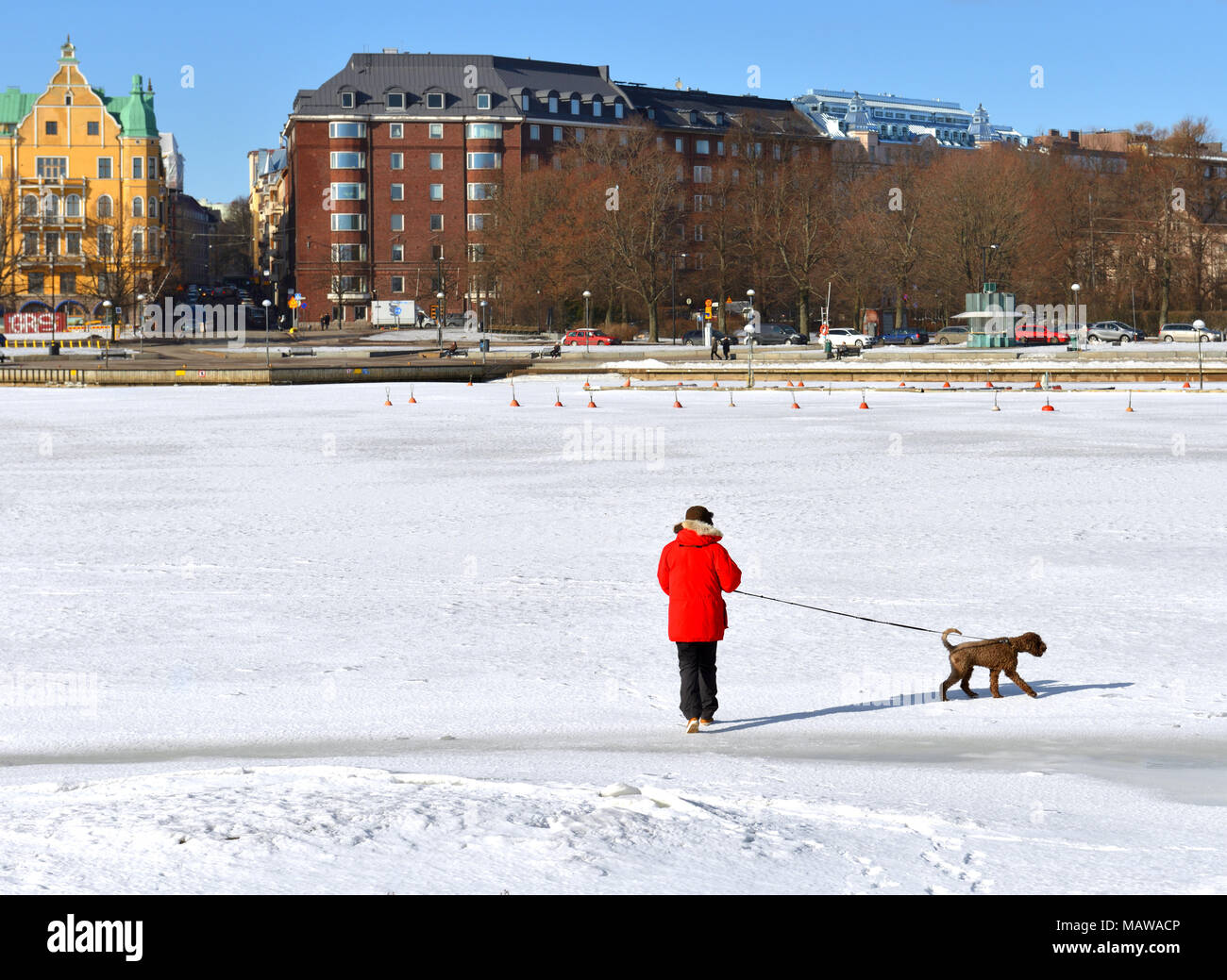HELSINKI, FINLAND - MARCH 26, 2018: Man in red jacket walks with dog on ice of Gulf of Finland - Stock Image