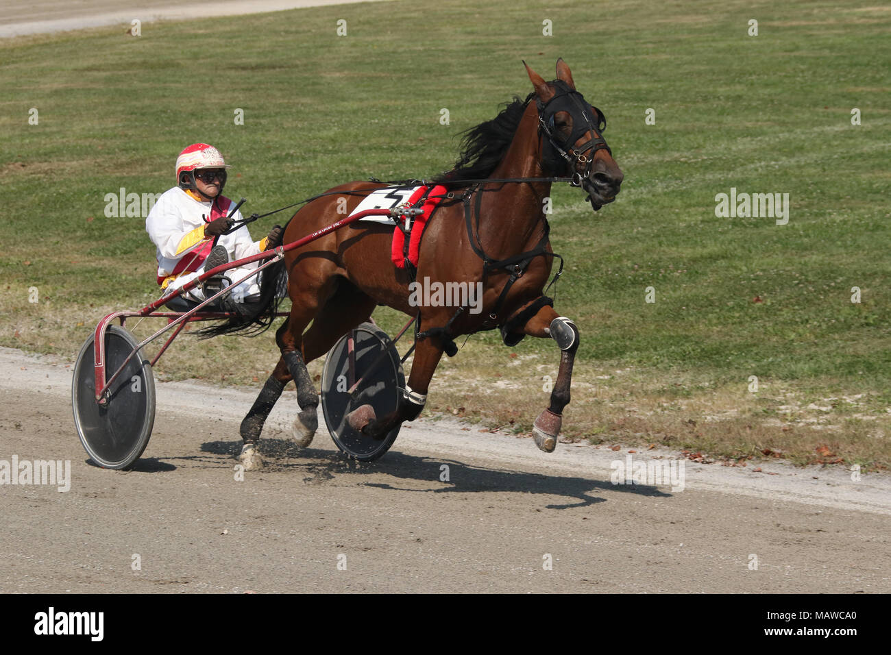 Male rider. Horse Harness Racing. Canfield Fair. Mahoning County Fair. Canfield, Youngstown, Ohio, USA. - Stock Image