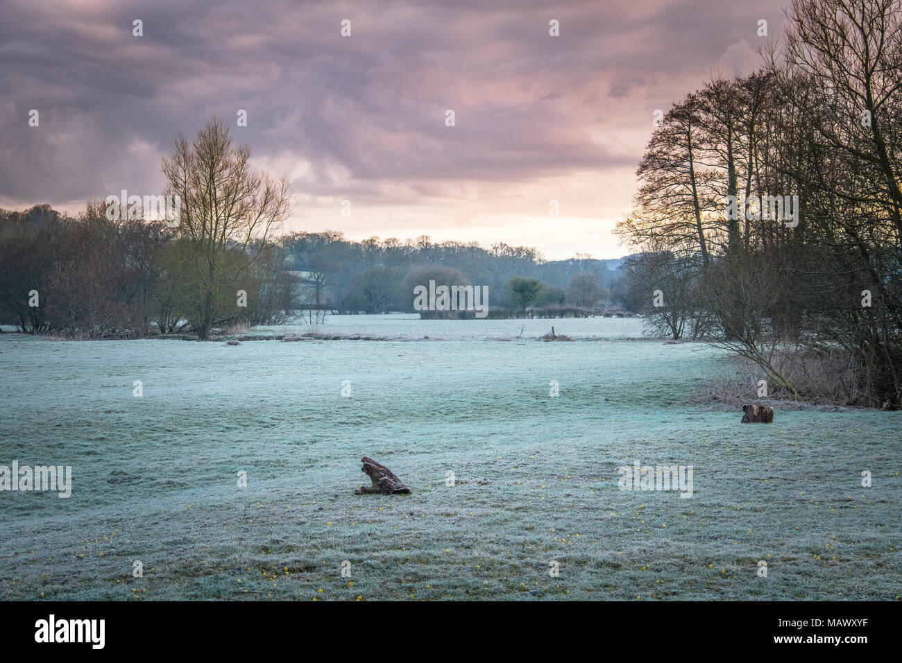 Frost over fields in Devon Area of Outstanding Natural Beauty. - Stock Image