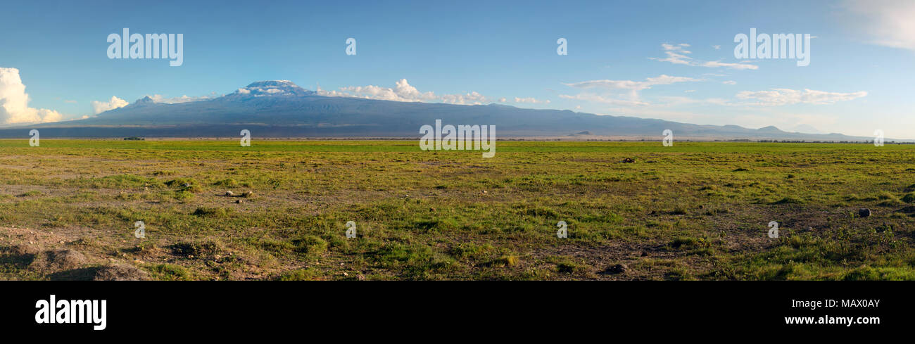 High resolution panorama of Amboseli national park with mount Kilimanjaro and small animals in the background. - Stock Image
