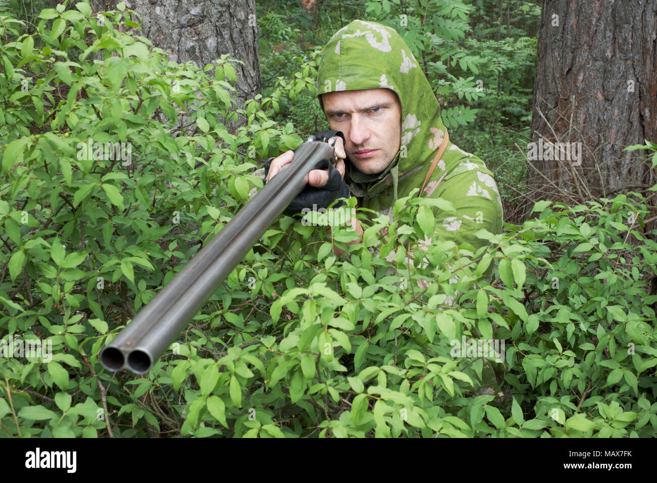 Angry  hunter with an old gun in the bushes Stock Photo