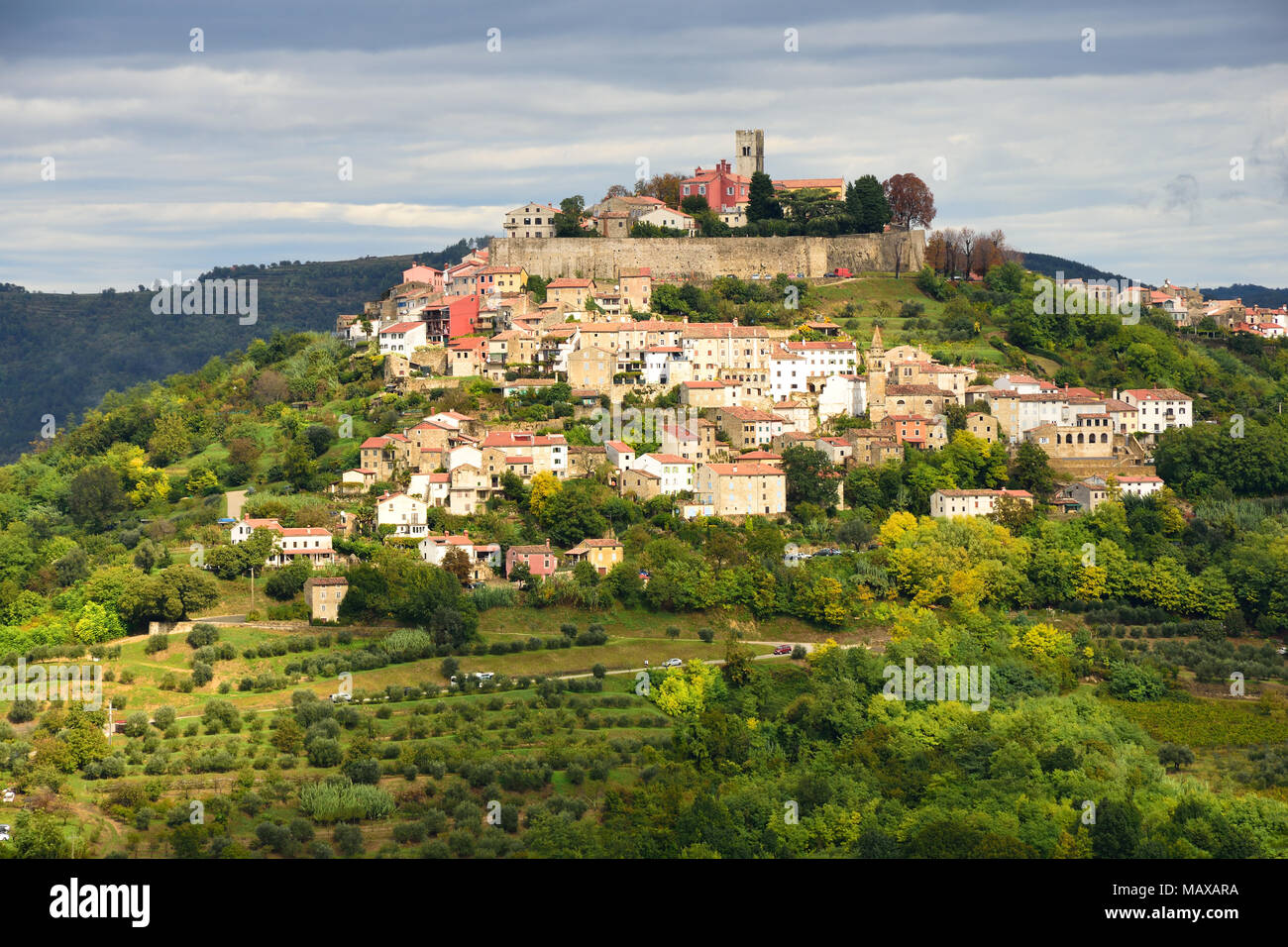 View to Motovun, croatian medieval town built on the hill. Stock Photo