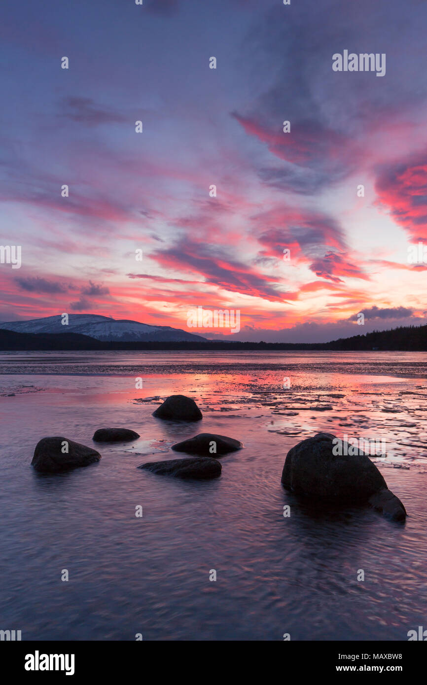 Loch Morlich at sunset in winter, Cairngorms National Park, Badenoch and Strathspey, Highland, Scotland, UK - Stock Image