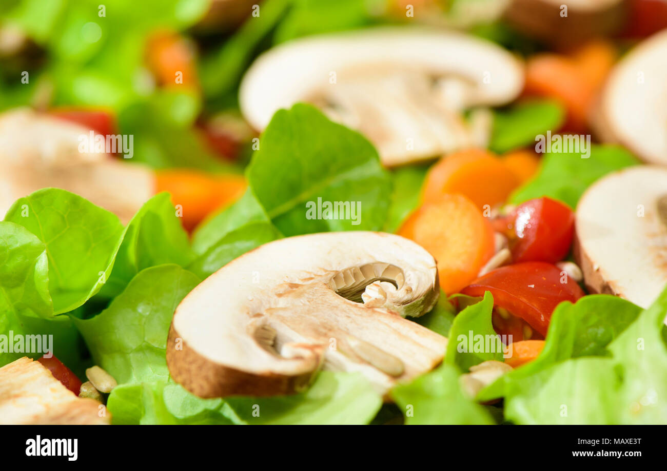 fresh green salad with mushrooms - Stock Image
