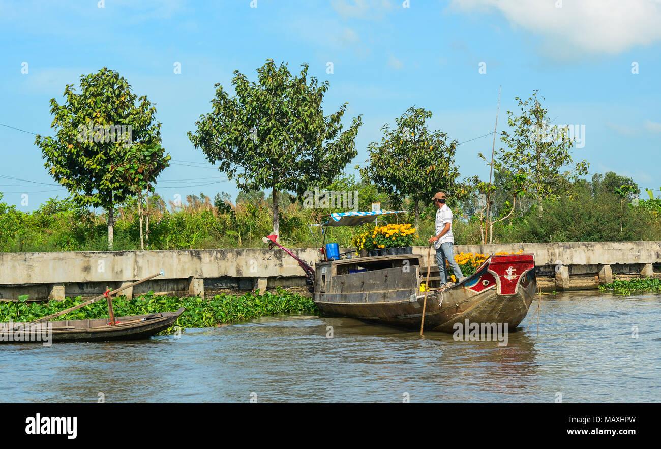 Mekong Delta, Vietnam - Feb 2, 2016. Cargo wooden boats on Mekong River in Mekong Delta, Vietnam. - Stock Image