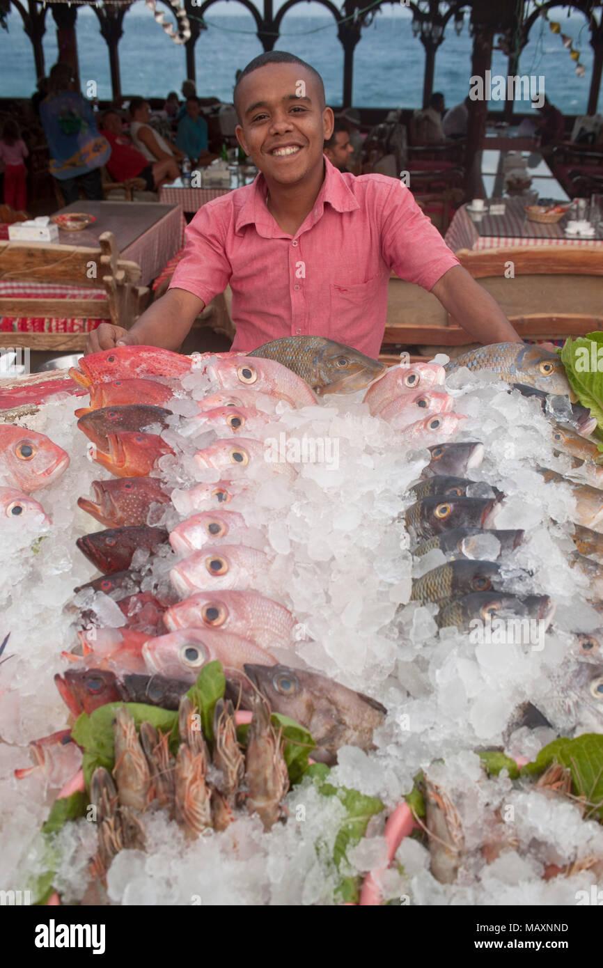 Egypt, Sinai Peninsula, Dahab, Seafood - Stock Image