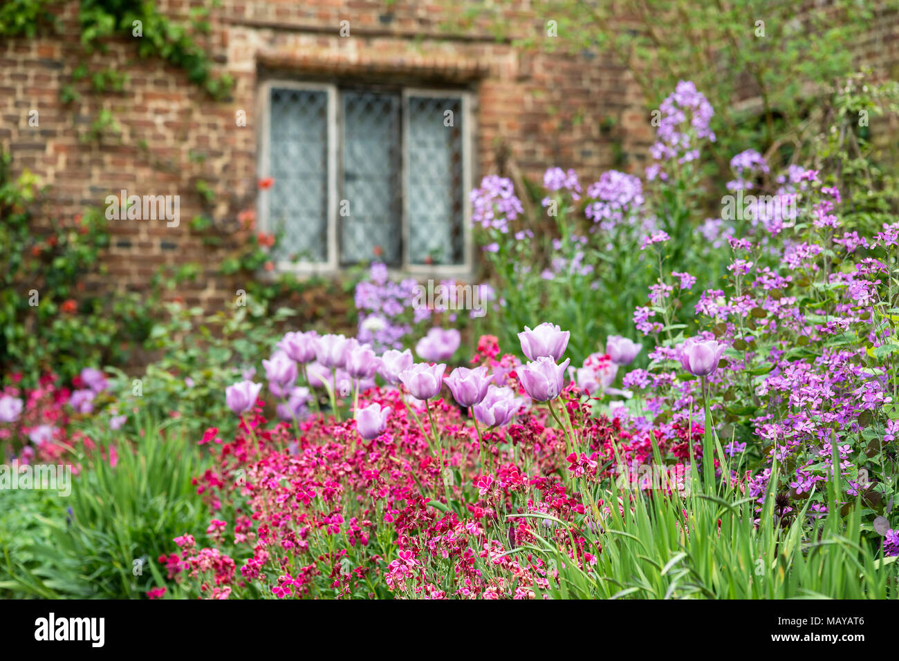 Quintessential English Country Garden Scene Landscape With Fresh