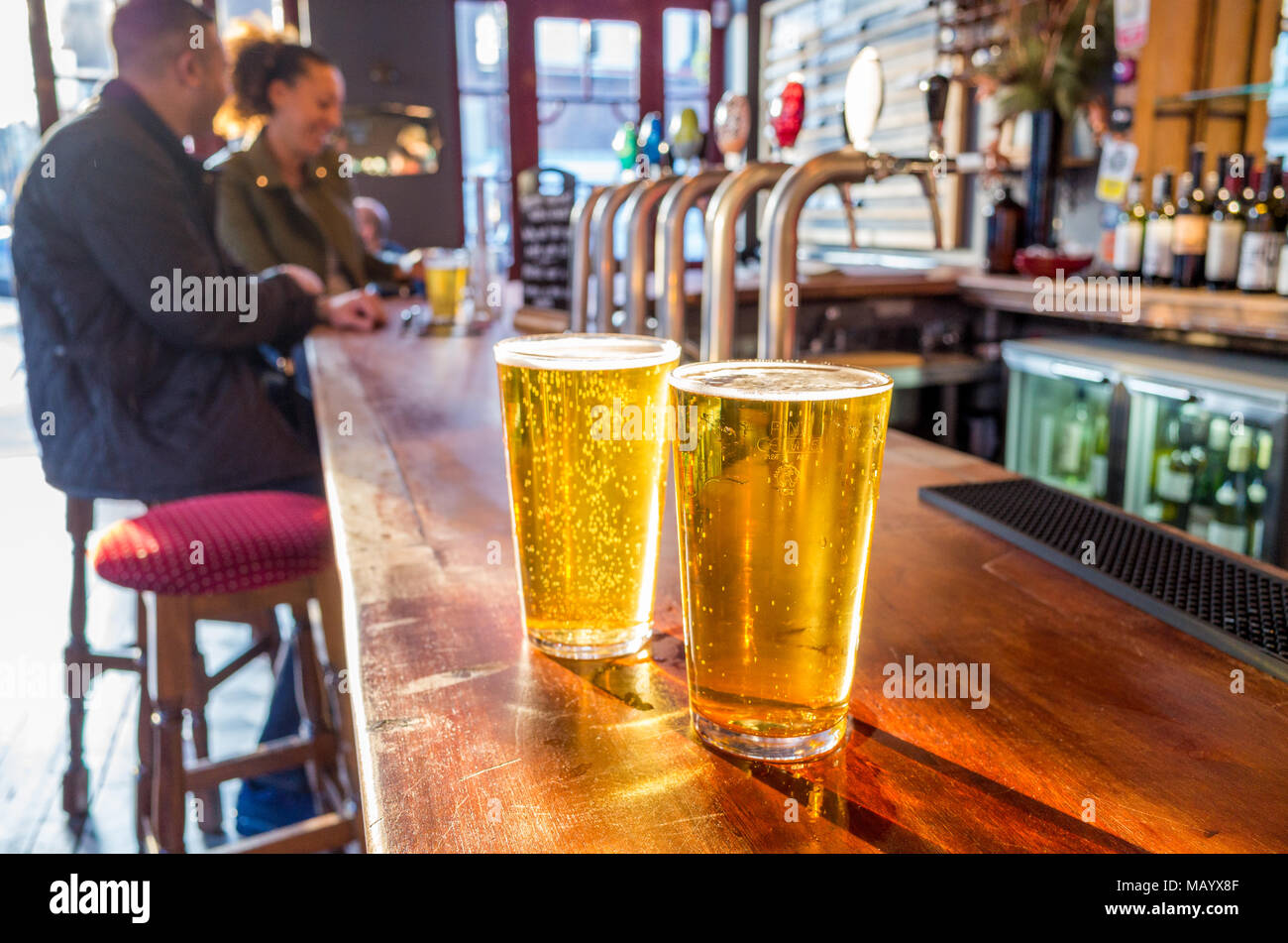 Close up of two pints of lager on the bar of a pub, UK, London - Stock Image