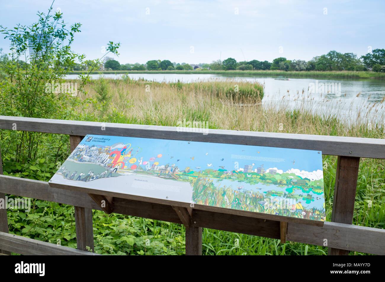 Woodberry Wetlands, Haringey, London, UK - Stock Image