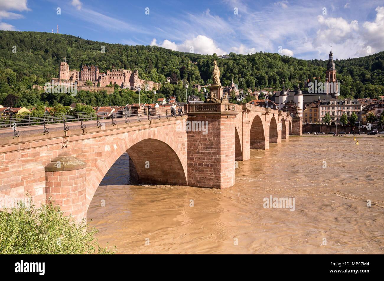 Hochwasser auf dem Neckar, Heidelberg, Baden-Württemberg, Deutschland, Europa - Stock Image