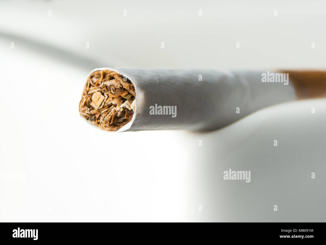 Close up of the tobacco inside a cigarette - Stock Image