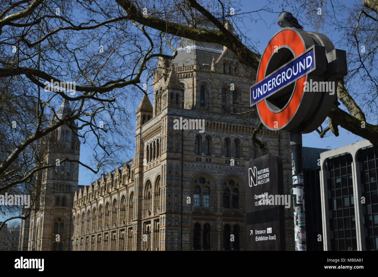 A view of the Natural History Museum in South Kensington, London - Stock Image