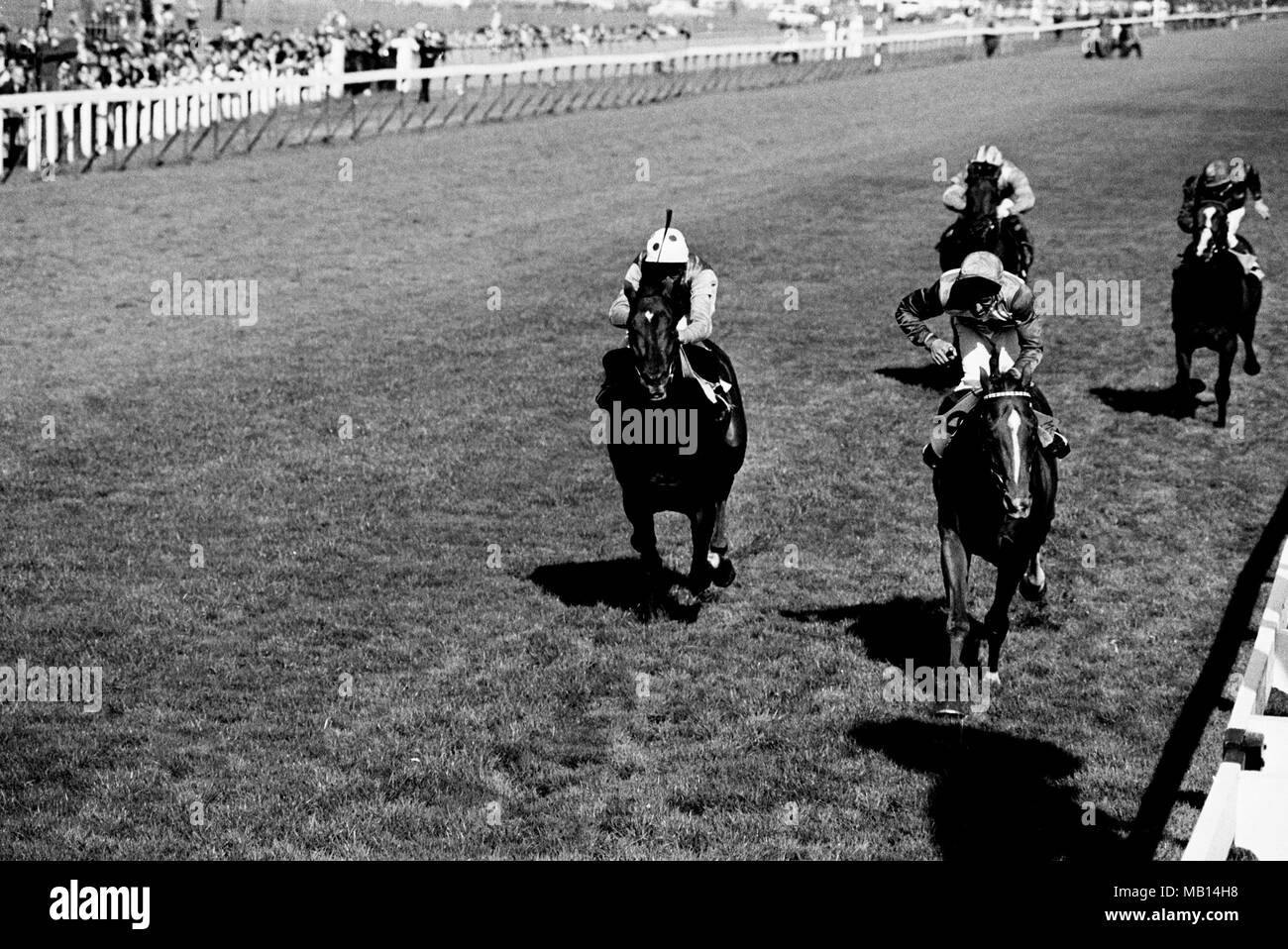 Le Moss (centre), Joe Mercer up, wins the Doncaster Cup (Group 3) at ...