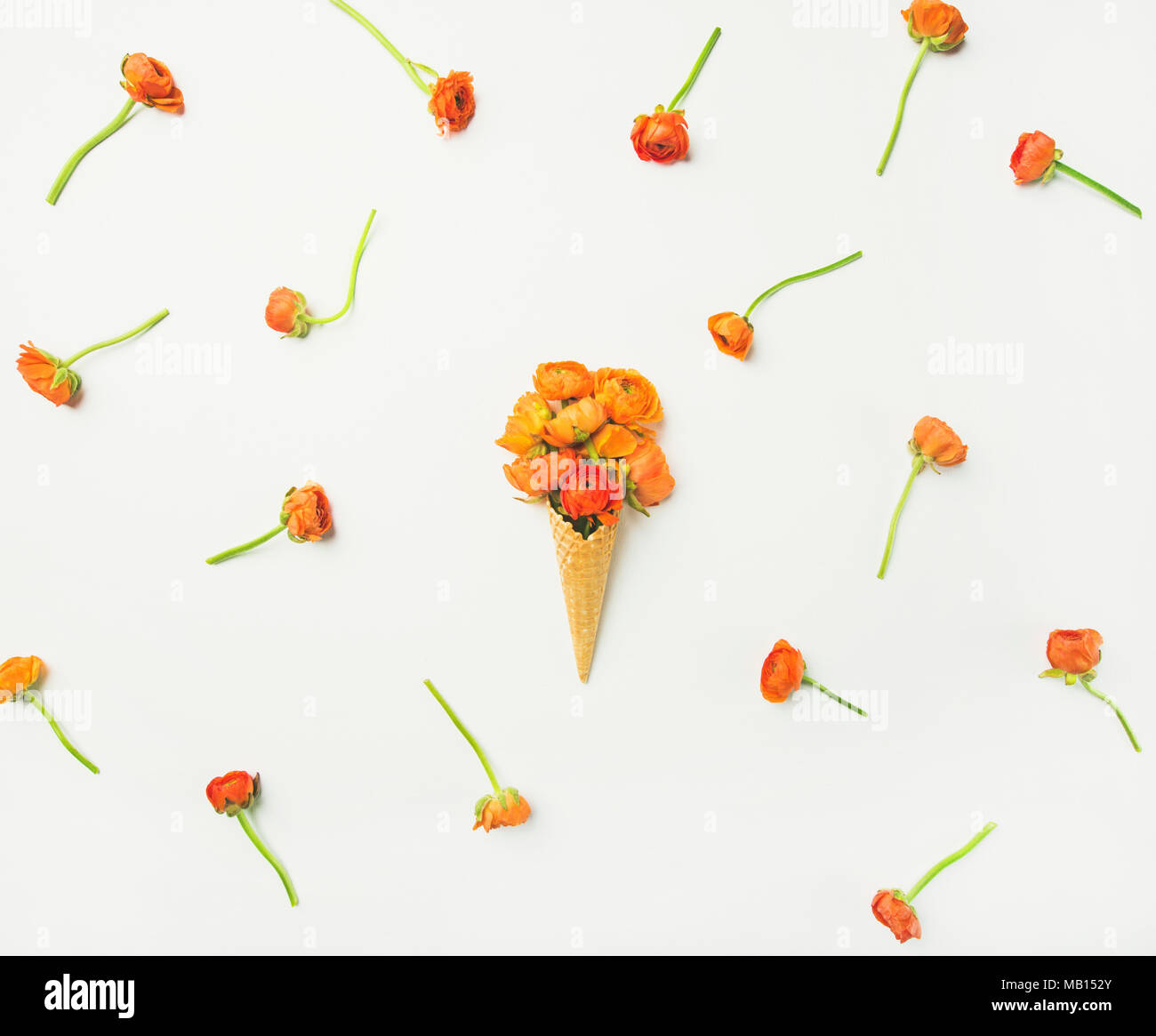 Flat-lay of waffle sweet cone with orange buttercup flowers over white background, top view, horizontal composition. Spring or summer mood concept Stock Photo