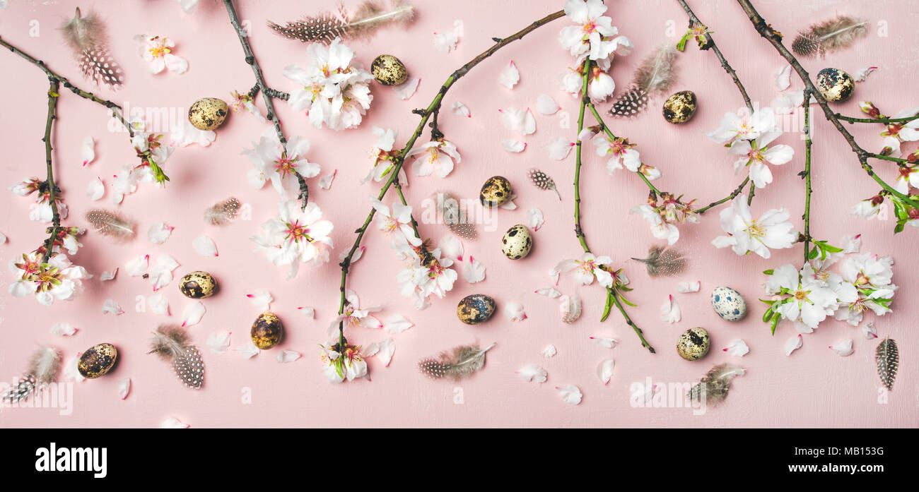Easter holiday background. Flat-lay of tender Spring almond blossom flowers on branches, feathers, quail eggs over light pink background, top view. Gr - Stock Image