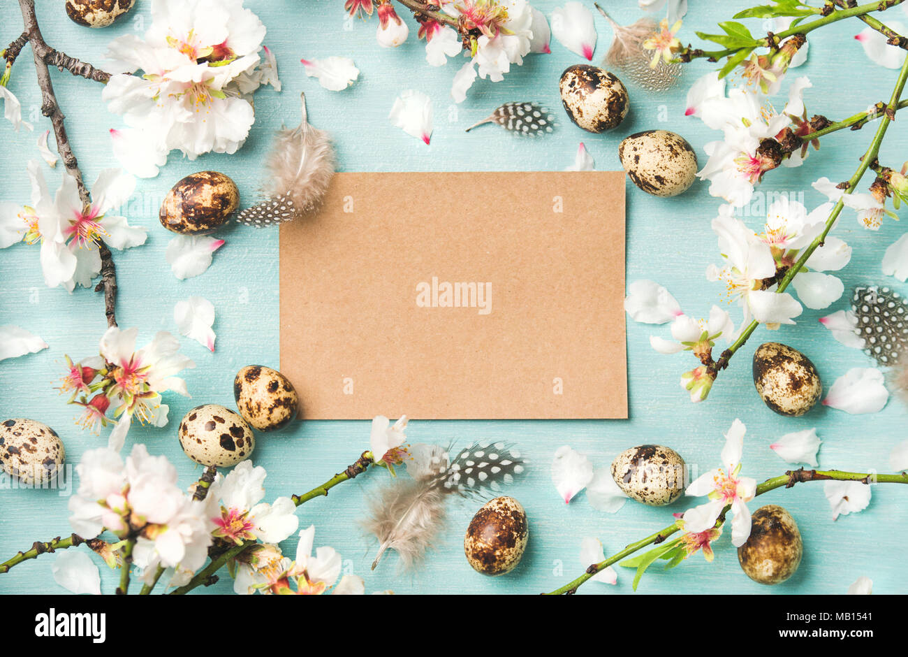 Easter holiday background. Flat-lay of tender Spring almond blossom flowers on branches, feathers, quail eggs and paper in center over blue background - Stock Image
