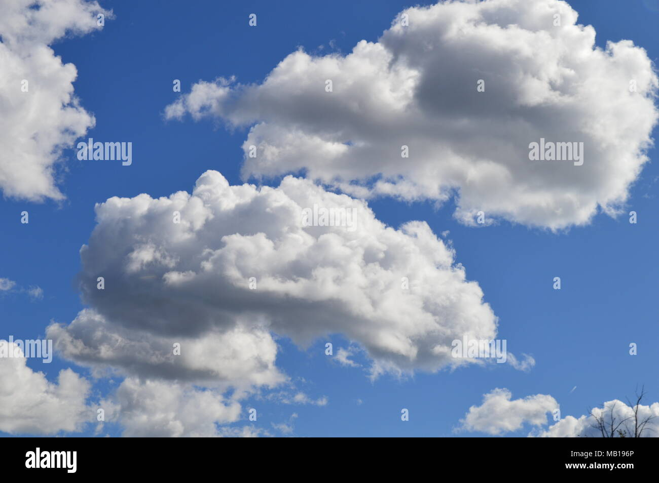 Fluffy clouds over a perfect blue sky - Stock Image