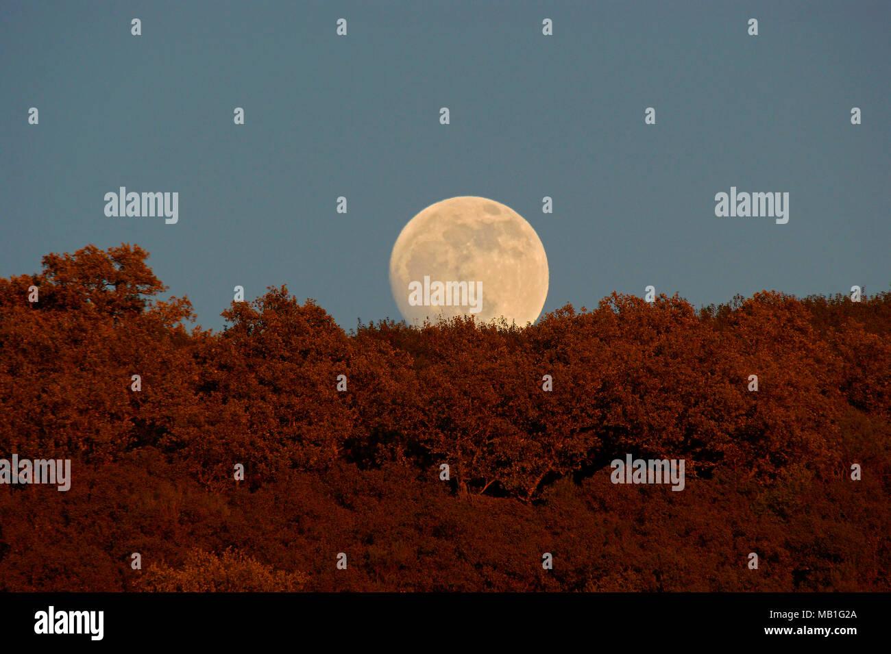 At the same time, sunset and moonrise in Andújar Natural Park y Sierra Morena, Spain. - Stock Image