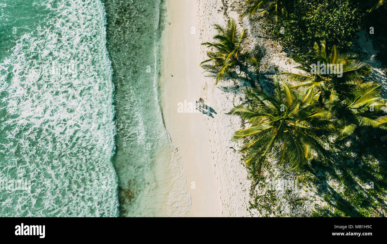 The couple walks on the beach between the ocean and palm trees - Stock Image