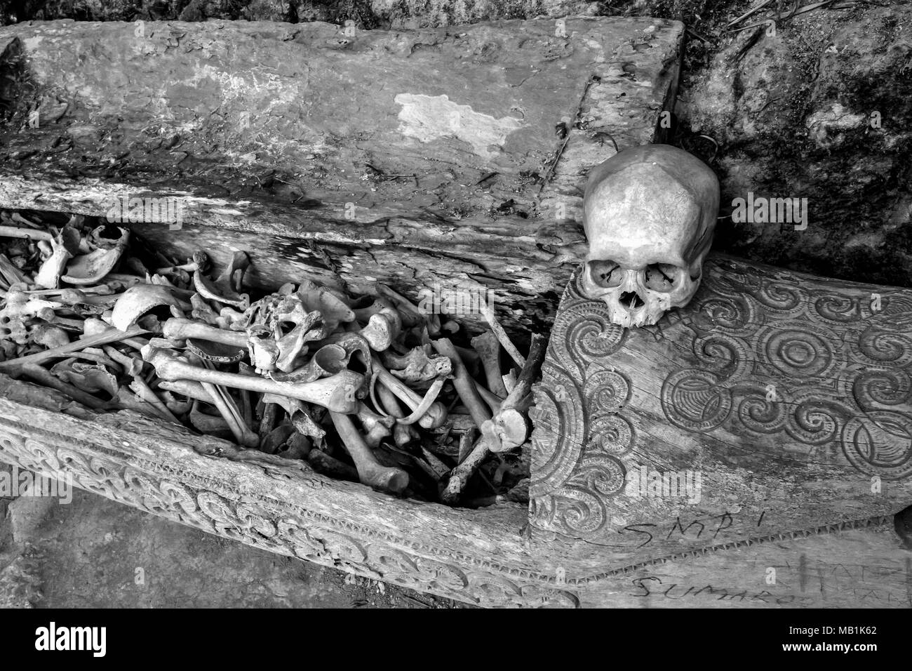 Tana Toraja - funerals, graves, burial sites in caves. Human sculls around burial sites are common. South Sulawesi, Indonesia. - Stock Image