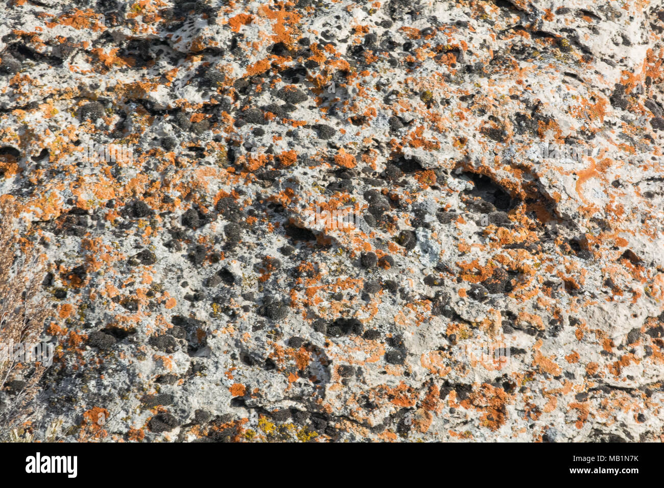 Orange lichen and black material cover a light colored granite face. - Stock Image