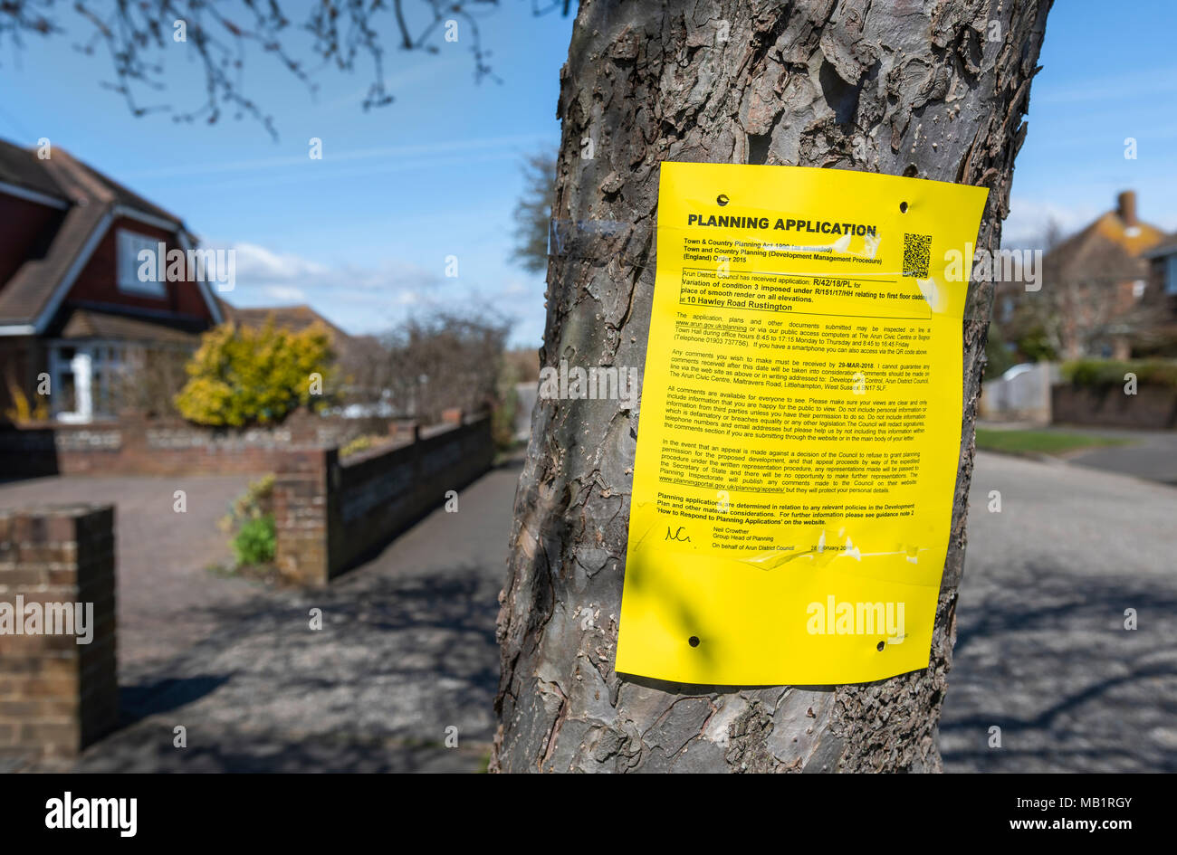 Council planning application form fixed to a tree outside a house in a town in England, UK. Planning permission notice. - Stock Image