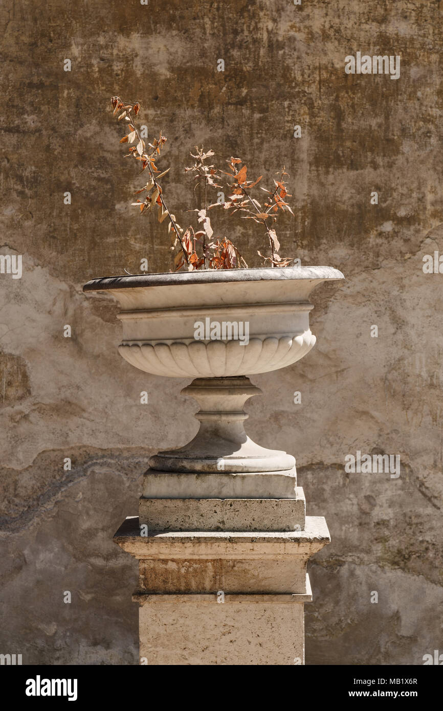 An old urn in the gardens of Villa Borghese in Rome, Italy. The tilted top half and almost dead plant made an interesting composition against the weat - Stock Image