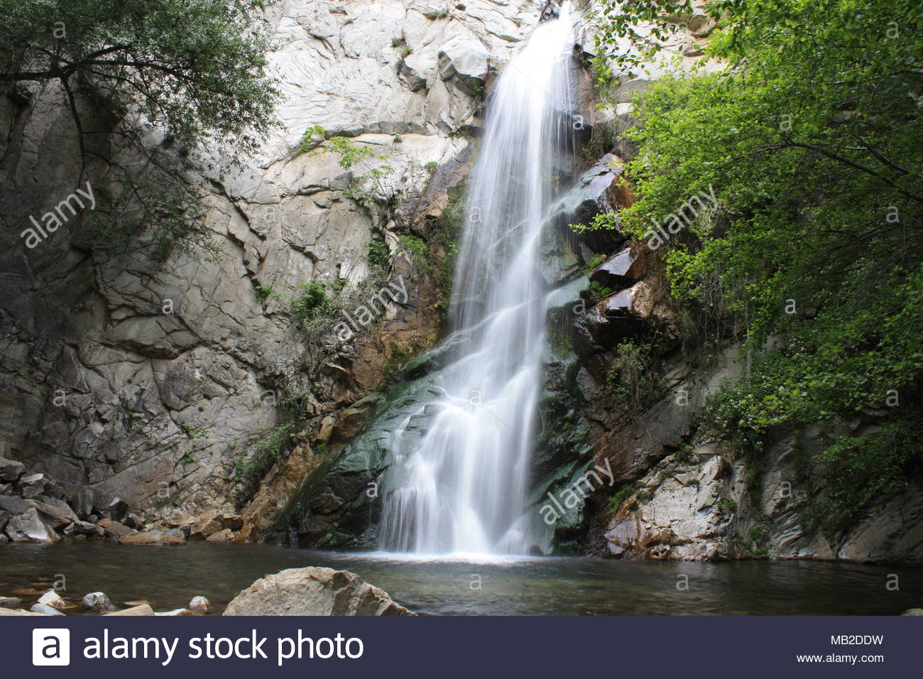 Sturtevant Falls in San Gabriel Mtns. near Chantry Flats, Los Angeles, CA Stock Photo