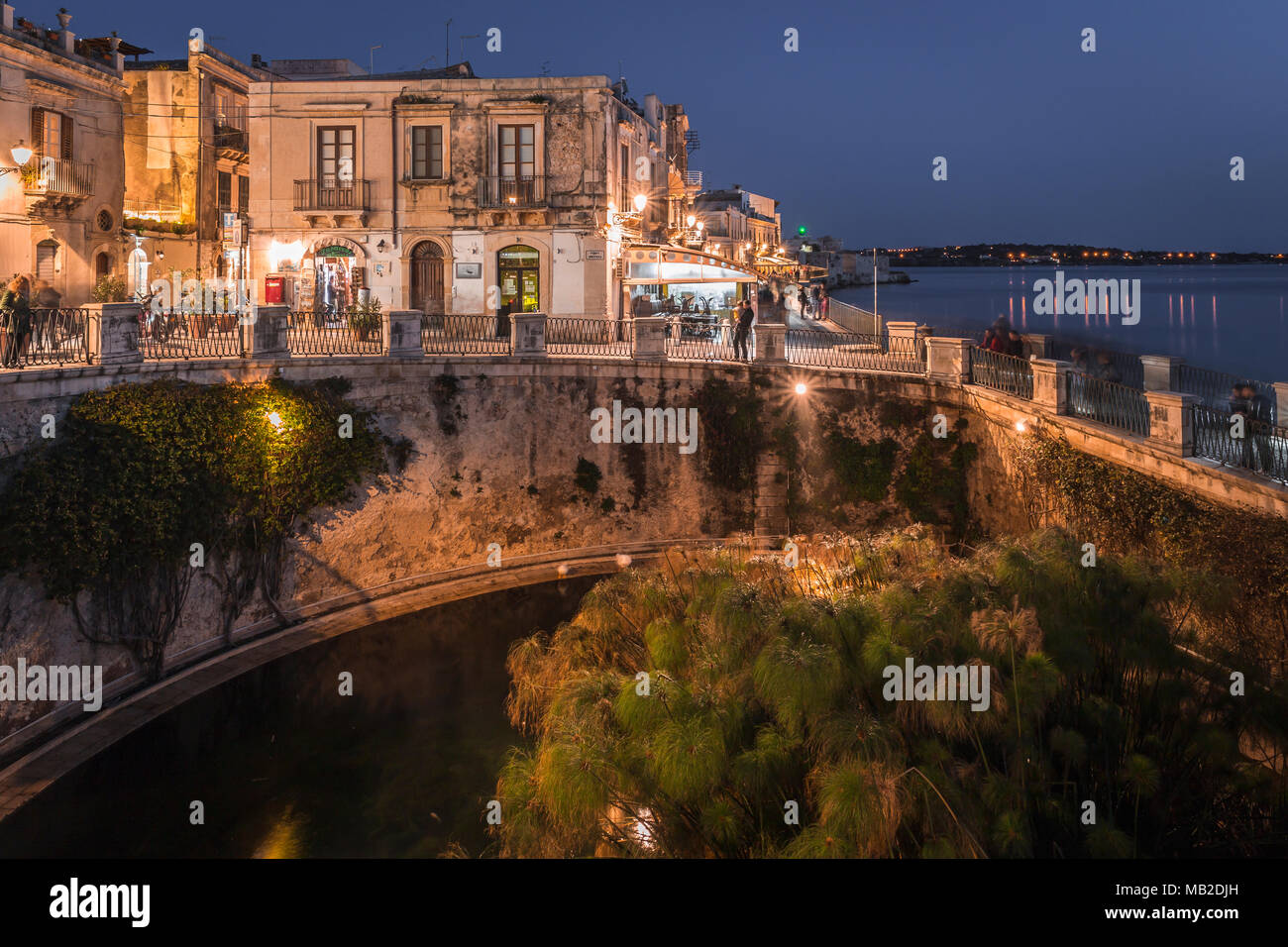 Fonte Aretusa - Fountain of Arethusa - in Ortigia, Siracusa, Sicily, Italy. - Stock Image