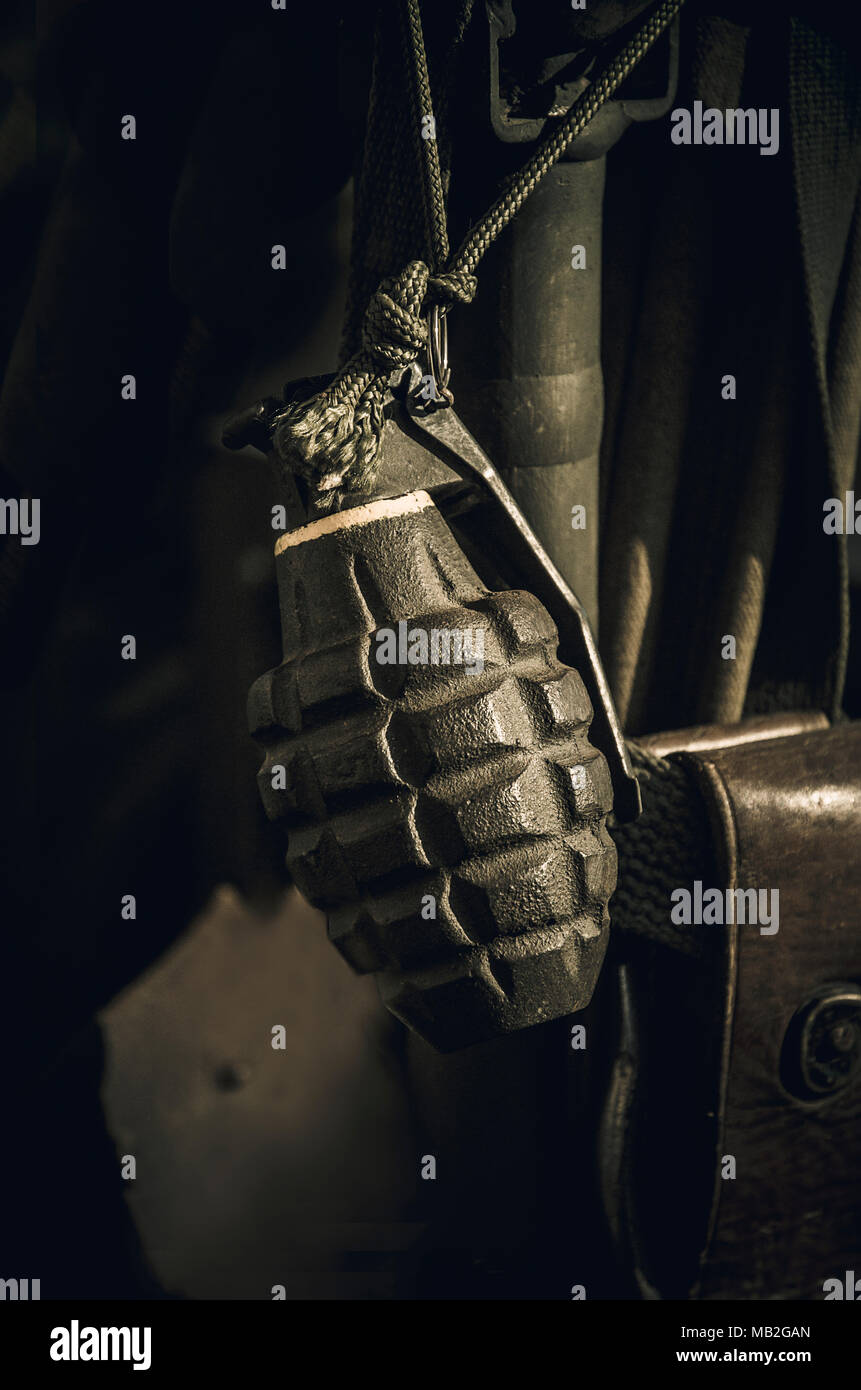 Grenade ,leather pouch and entrenching tool, khaki tones - Stock Image