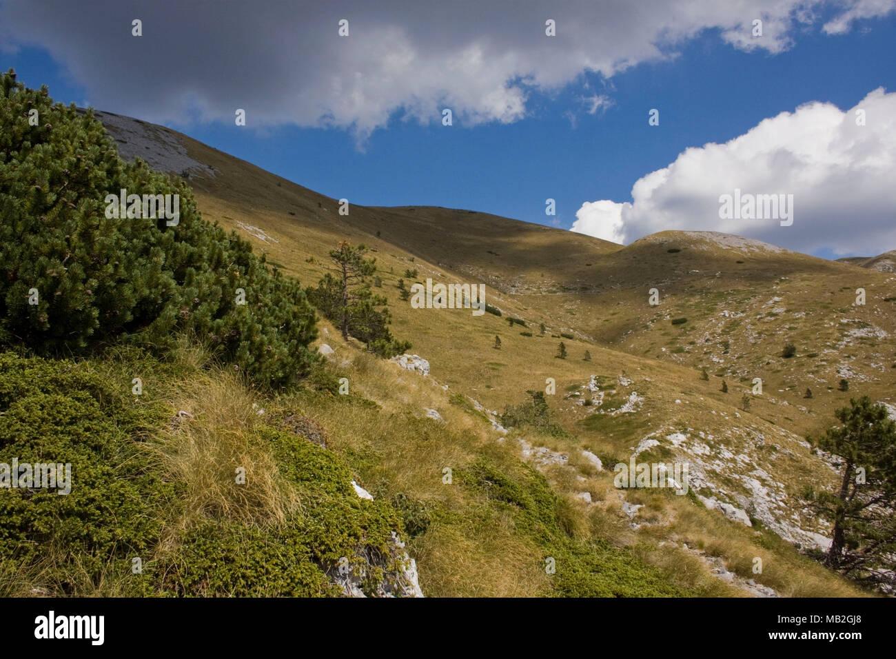 Velebit top of the mountain Stock Photo