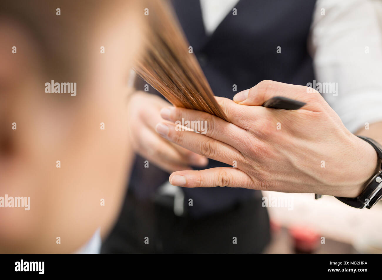 Cropped portrait of hairdresser hands holding hair strand for cut - Stock Image