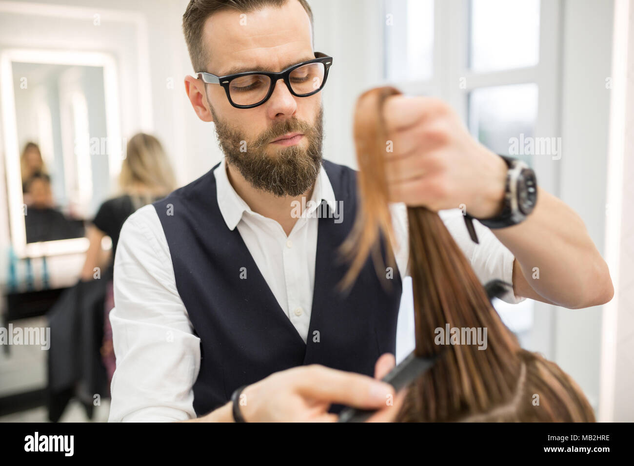 Portrait of focused hairdresser combing customer hair before haircut - Stock Image
