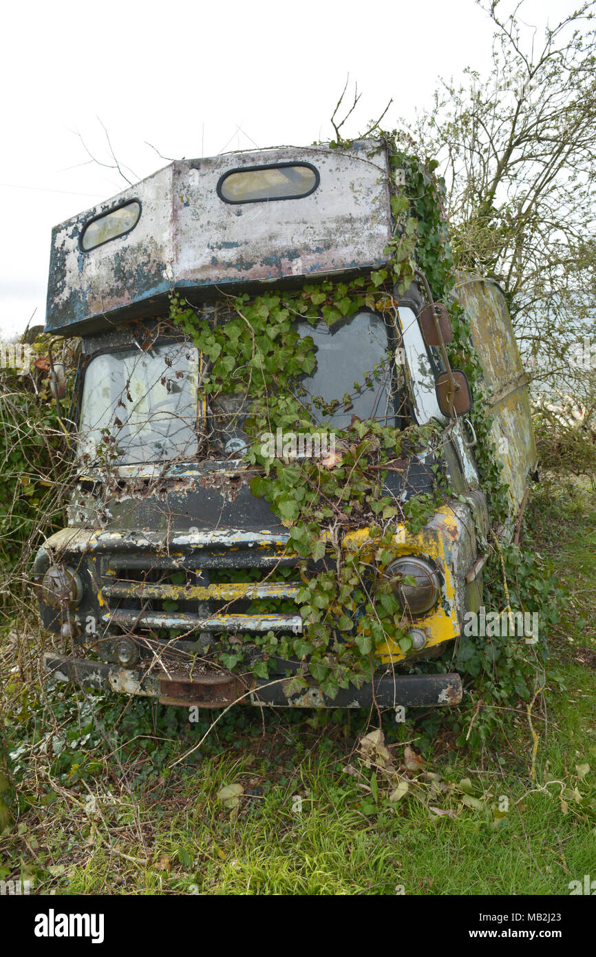 An old abandoned motor vehicle covered in overgrown ivy,moss,weeds and grass on a farm in North Somerset in the UK. Robert Timoney/Stock/Image - Stock Image