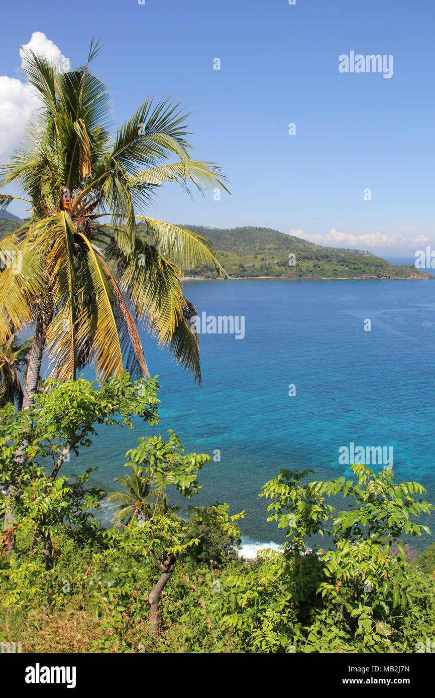 View of tropical plantations along the Lombok Strait of Indonesia - Stock Image