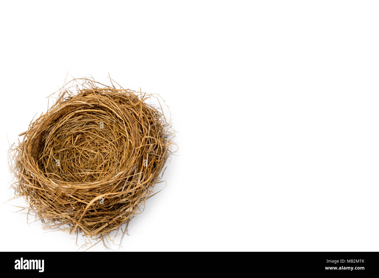 Horizontal shot of a bird's nest in the lower left hand corner of the shot.  The focus is on the center of the nest. - Stock Image
