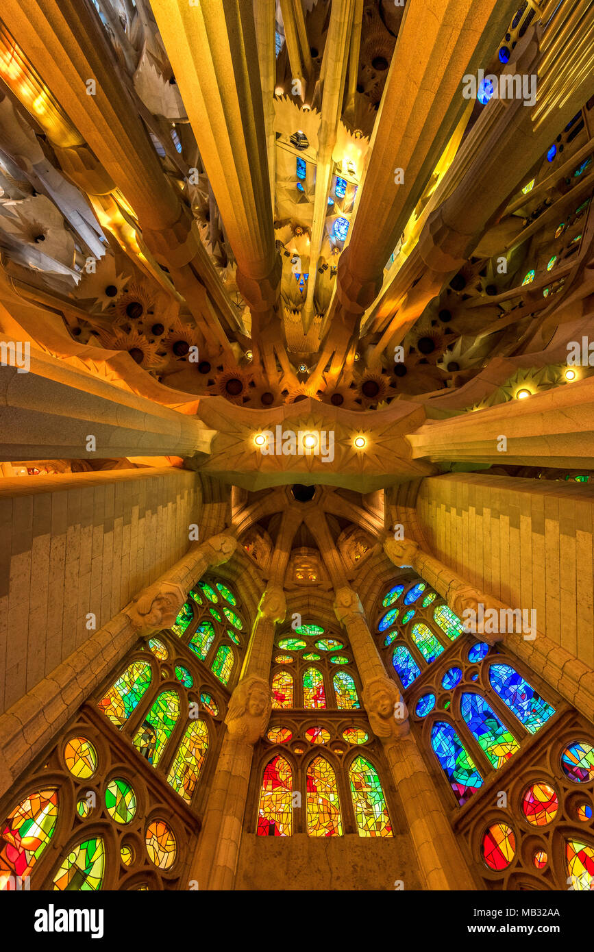 Low angle view of the ceiling, Sagrada Familia, Barcelona, Catalonia, Spain - Stock Image