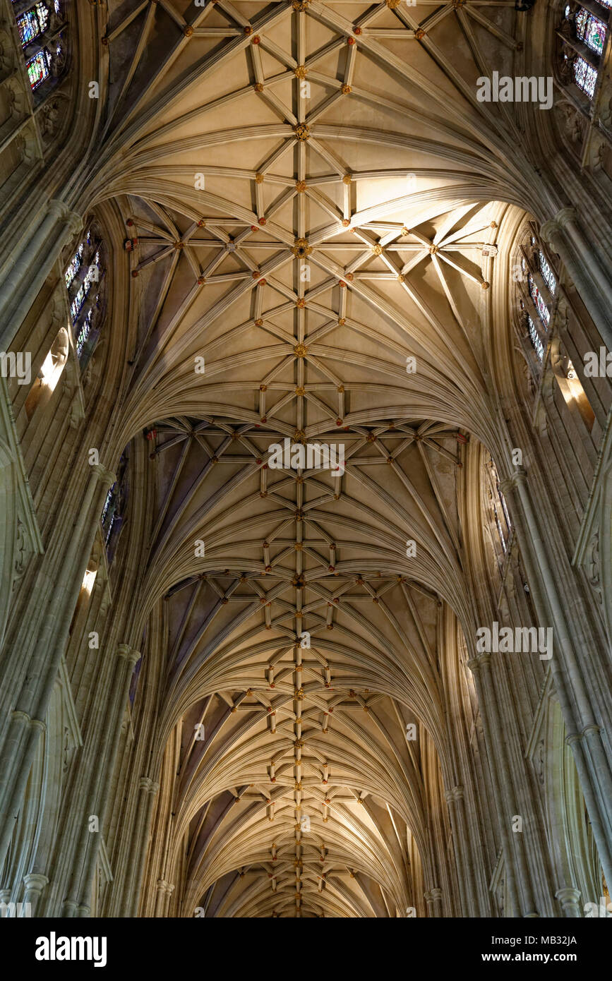 Cross vault, nave, Cathedral of Canterbury, Canterbury, Kent, England, United Kingdom - Stock Image