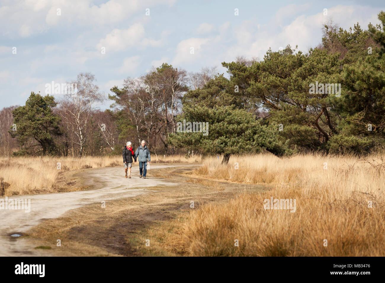 Couple walking National Park 'de Groote Peel' in spring, Netherlands - Stock Image