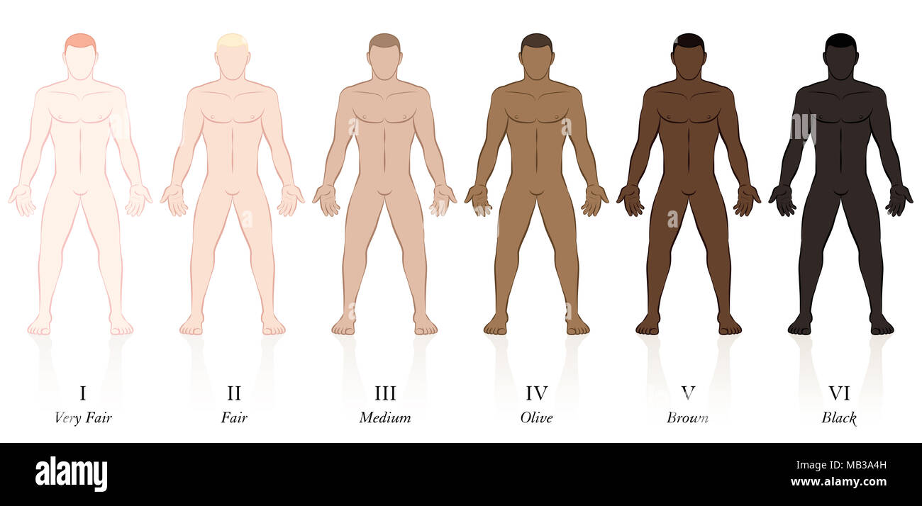 Skin types. Six men with different skin colors. Very fair, fair, medium, olive, brown and black, to determine the sun protection factor. - Stock Image